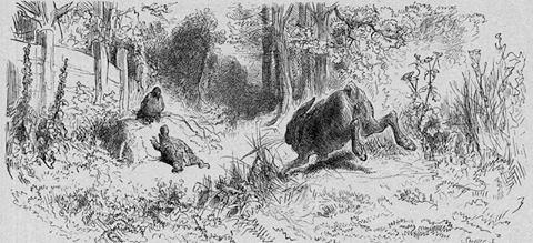 La lepre e la tartaruga, favola di Esopo