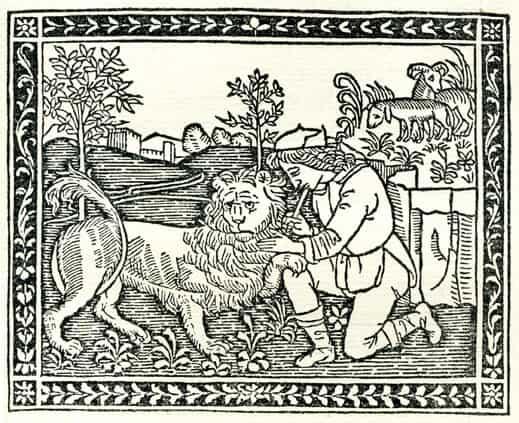 Il leone innamorato e il contadino, favola di Esopo