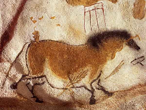 Cavallo, 18.000-16.000 anni fa ca. Ocra rossa, carboncino e graffiti su calcare. Grotta di Lascaux, Dordogna, Francia.