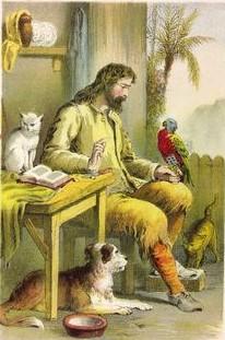 crusoe e poll