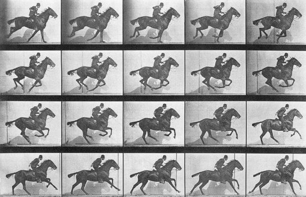 Edward Muybridge, Successione di fotogrammi di un cavallo al galoppo, 1887