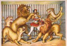 il circo equestre