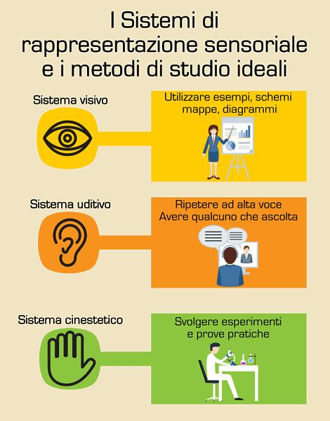 Il metodo di studio ideale per i sistemi di rappresentazione