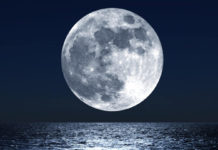 Luna: caratteristiche, origine, movimenti lunari