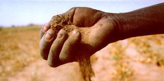 La desertificazione: cause e conseguenze