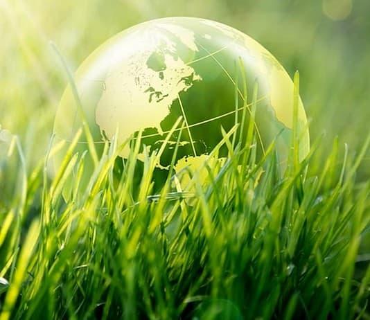 La tutela dell'ambiente in Italia