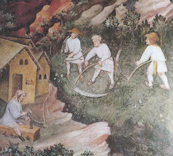 Il sistema curtense: l'economia dell'età feudale