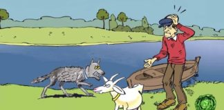 Salvare capra e cavoli, origine e significato