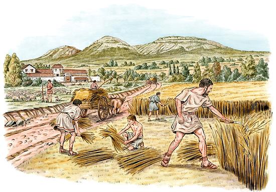 Leggi agrarie romane in età repubblicana