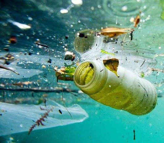 Inquinamento del mare: tema svolto di Italiano
