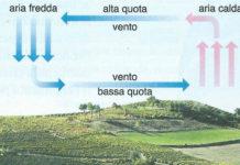I venti: come si formano e tipologie