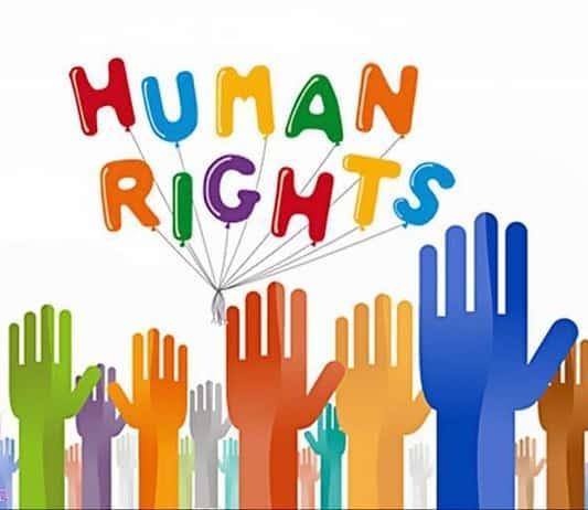 La difesa dei diritti umani: tema svolto di Italiano