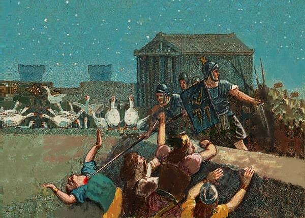 Le oche del Campidoglio - Storia e leggende di Roma