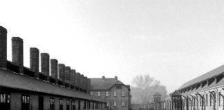 Campi di concentramento: storia e descrizione