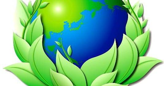 Vivere a impatto zero: cosa significa, consigli utili