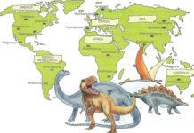 Dinosauri: specie, caratteristiche, estinzione