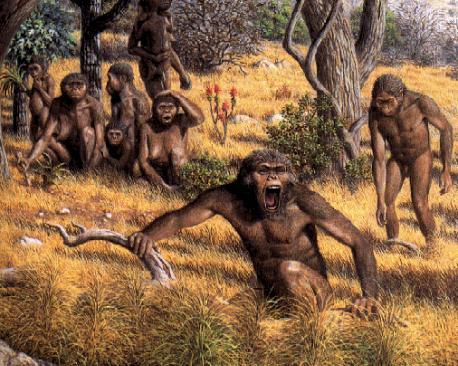 Australopitechi: chi sono, caratteristiche