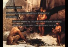 Paleolitico medio: l'uomo di Neanderthal