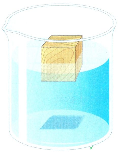 Il galleggiamento dei corpi