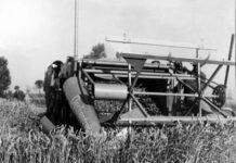 La battaglia del grano nel regime fascista