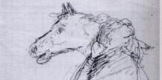 cavallina storna