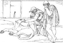 argo cane di ulisse